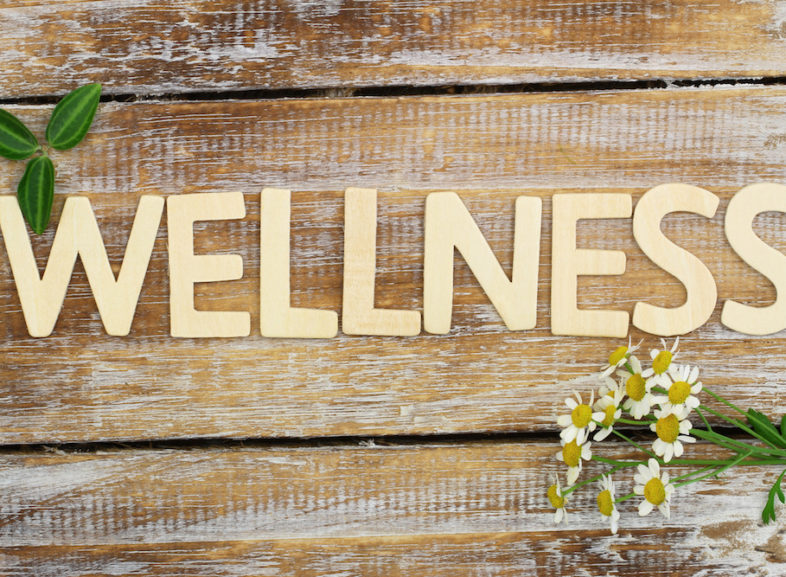 From Being Caught in the Undertow of Madness… to Riding the Wave of Wellness